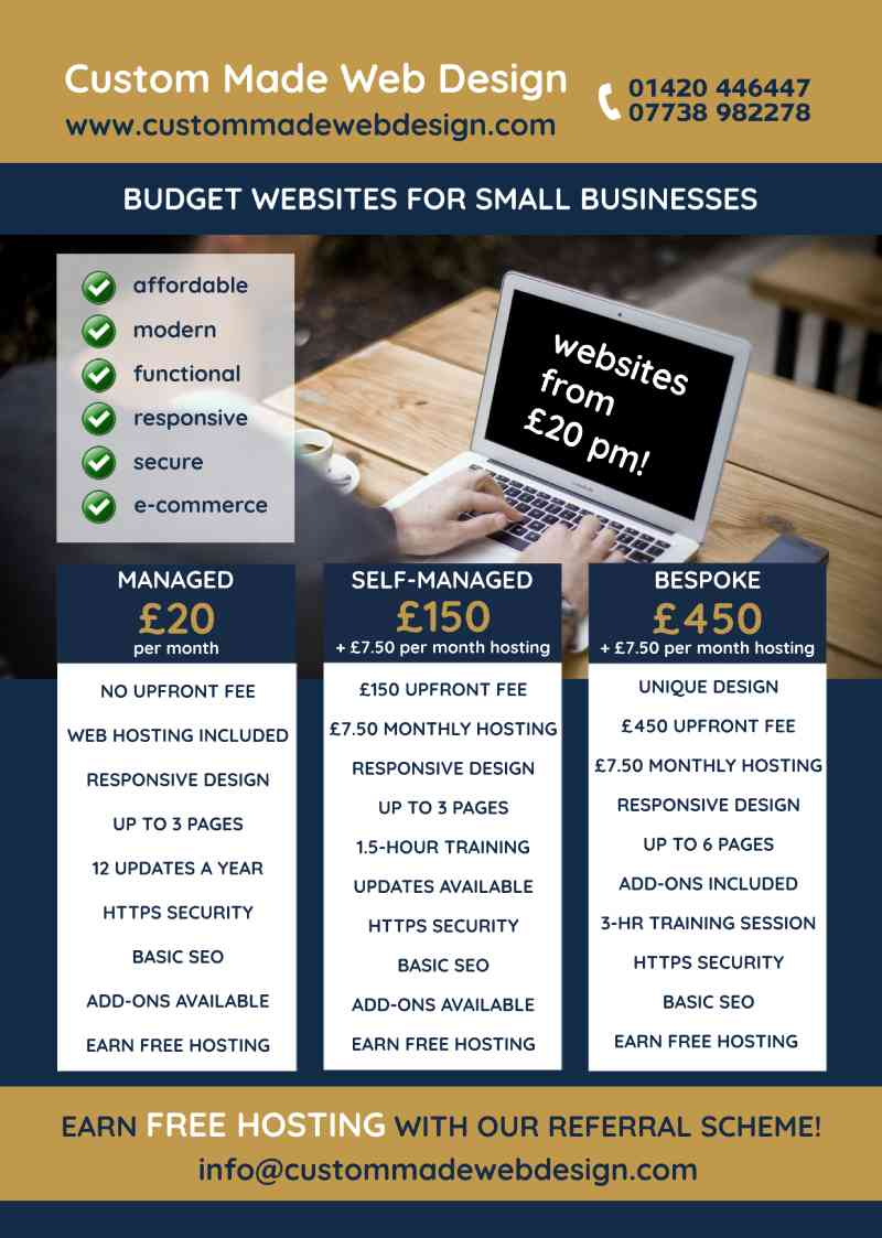 Budget business flyer design and printing