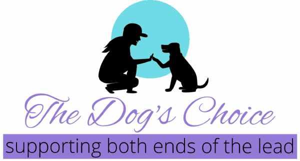 The-Dogs-Choice-Logo